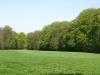 Hintergrund-Landschaft-Natur-Panorama_Textur_A_P5042471