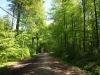 Hintergrund-Landschaft-Natur-Panorama_Textur_A_P5042474