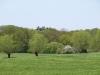 Hintergrund-Landschaft-Natur-Panorama_Textur_A_P5042489