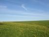 Hintergrund-Landschaft-Natur-Panorama_Textur_A_P5052522