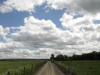 Hintergrund-Landschaft-Natur-Panorama_Textur_A_P5183822
