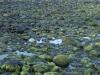 Hintergrund-Landschaft-Natur-Panorama_Textur_A_P5254975