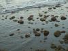 Hintergrund-Landschaft-Natur-Panorama_Textur_A_P5254985