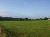 Hintergrund-Landschaft-Natur-Panorama_Textur_A_P8234617