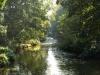 Hintergrund-Landschaft-Natur-Panorama_Textur_A_P9279886