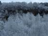 Hintergrund-Landschaft-Natur-Panorama_Textur_A_PB226732
