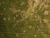 Baum-Rinde_Textur_A_PA256330