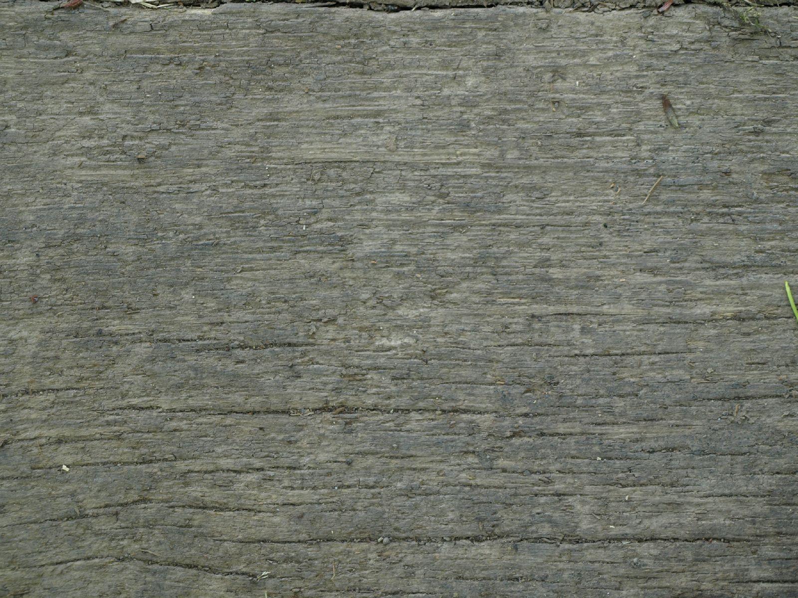 Holz_Textur_A_P5112638