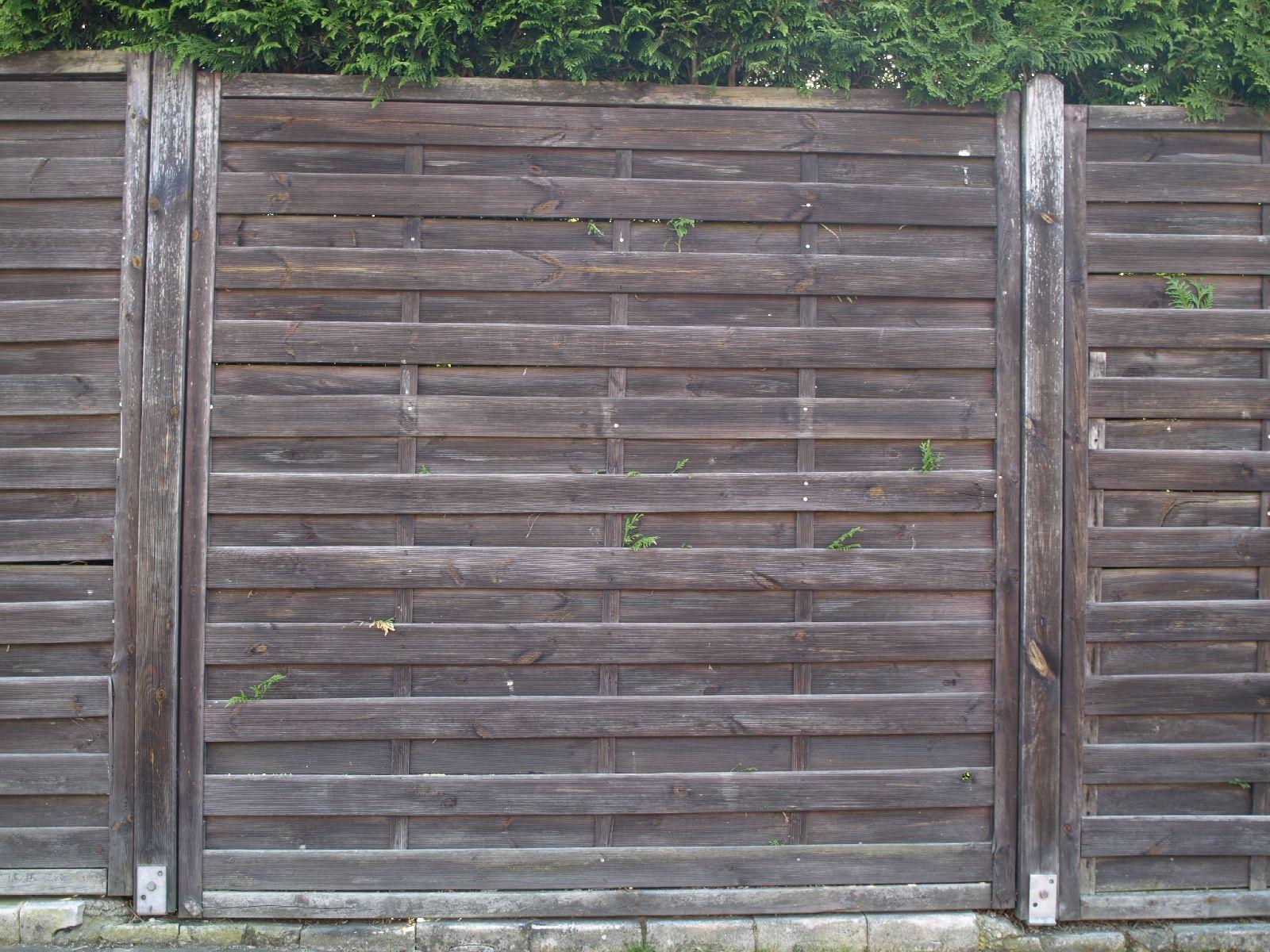 Holz_Textur_A_P5112651