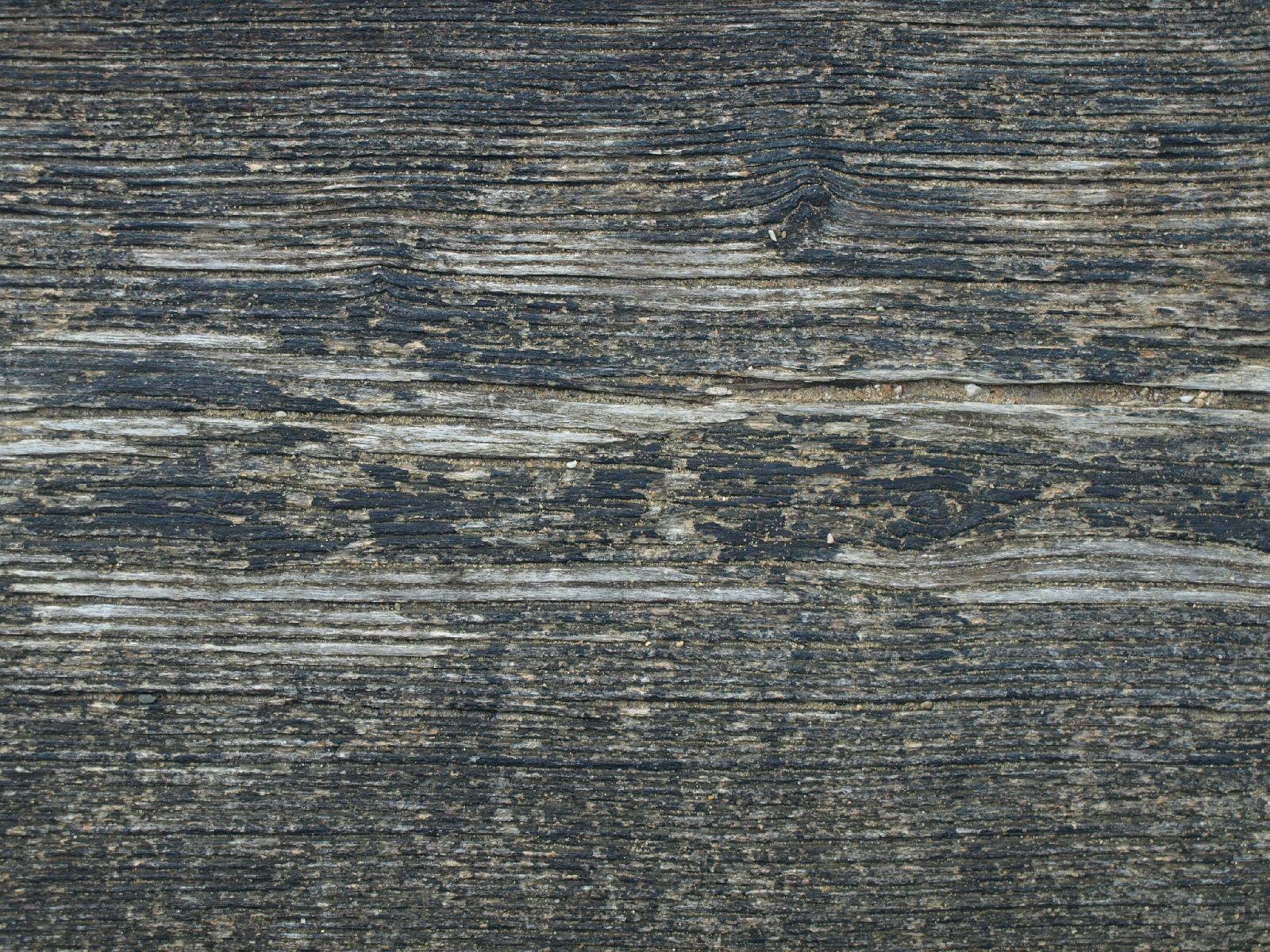 Holz_Textur_A_P8154265