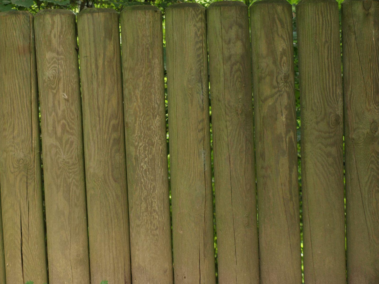 Holz_Textur_A_P9129612