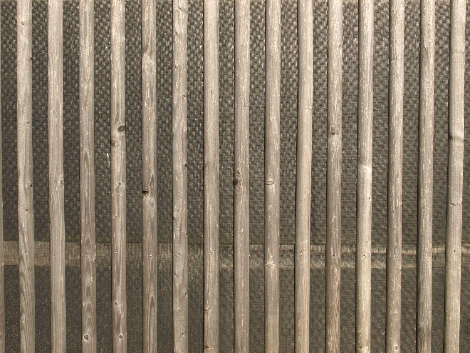 Holz_Textur_A_P9129646