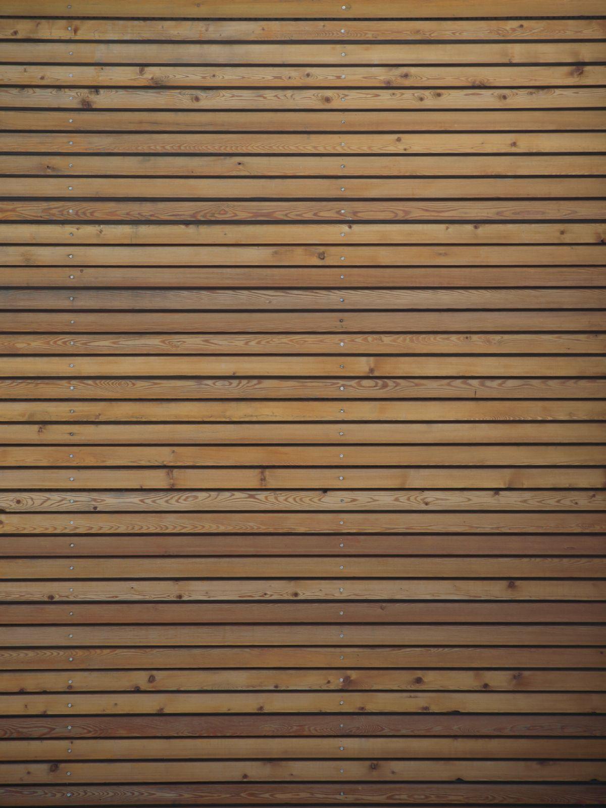 Holz_Textur_A_P9269855