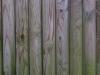 Holz_Textur_A_P1189439