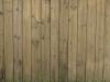 Holz_Textur_A_P4110731