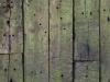Holz_Textur_A_P4201436