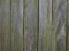 Holz_Textur_A_P5022113