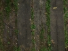 Holz_Textur_A_P9129622