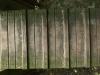Holz_Textur_A_P9129626