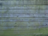 Holz_Textur_A_P9285530