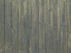 Holz_Textur_A_PA045694