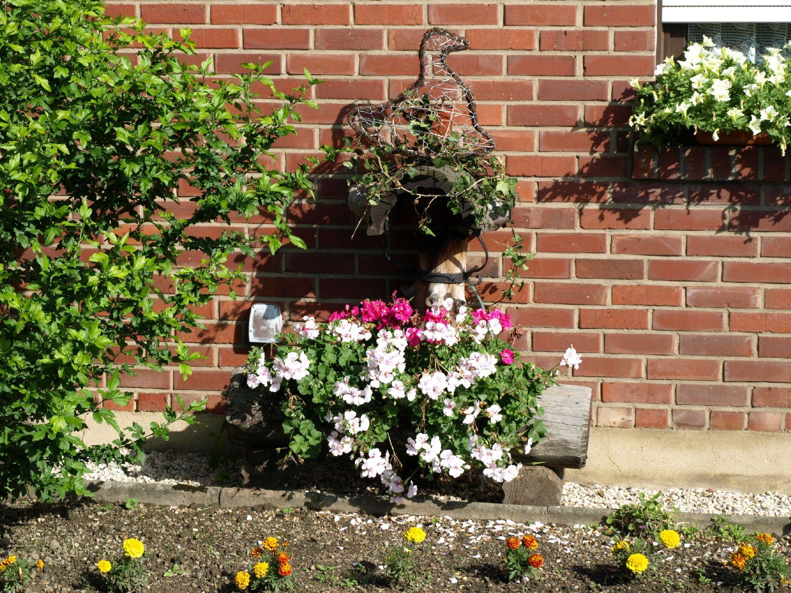 Pflanzen-Blumen-Foto_Textur_B_P6293864