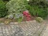 Pflanzen-Blumen-Foto_Textur_B_P5253066