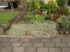 Pflanzen-Buesche-Foto_Textur_B_P6153440
