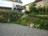 Pflanzen-Buesche-Foto_Textur_B_P6193521