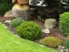 Pflanzen-Buesche-Foto_Textur_B_P6283832