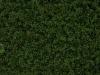 Pflanzen-Hecken-Foto_Textur_B_P6283824