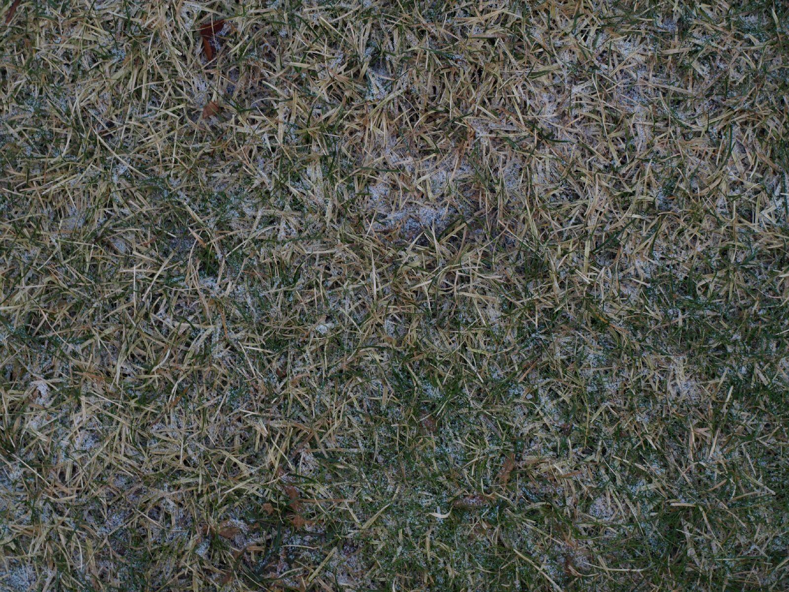 Schnee-Eis_Textur_A_P1018658
