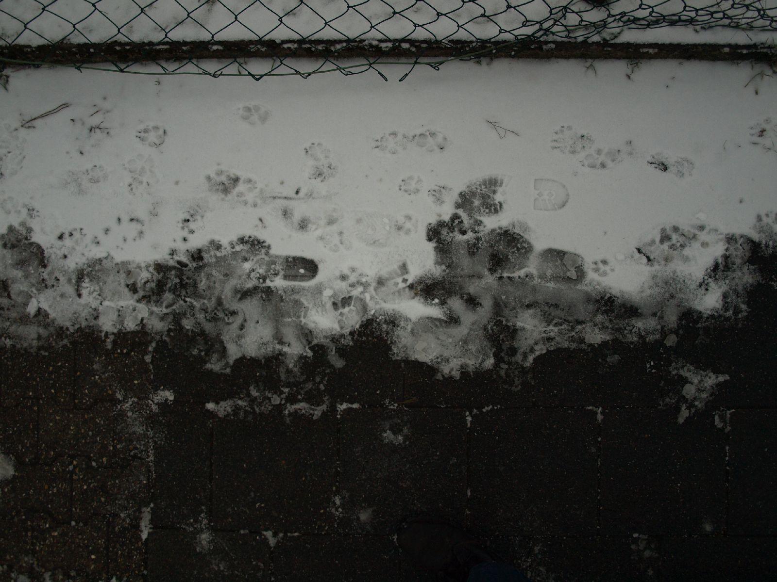 Schnee-Eis_Textur_A_P1028716