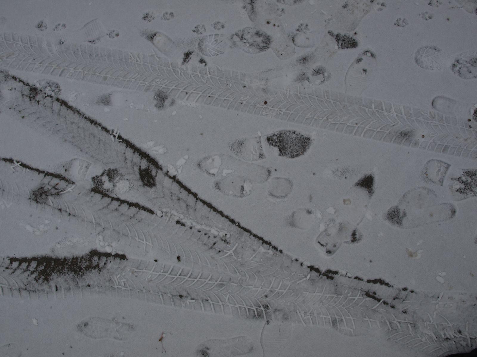 Schnee-Eis_Textur_A_P1048786