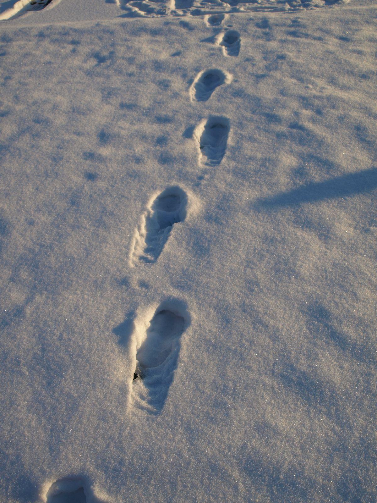 Schnee-Eis_Textur_A_P1109027