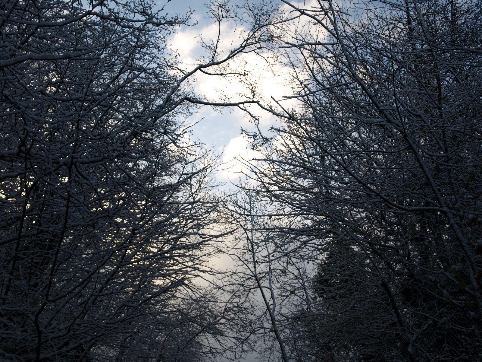 Schnee-Eis_Textur_A_PB226719