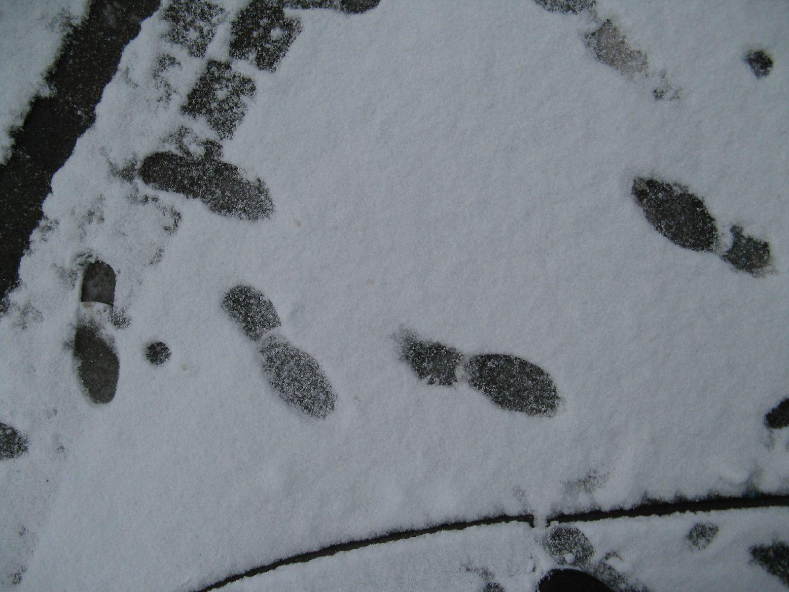 Schnee-Eis_Textur_B_5823