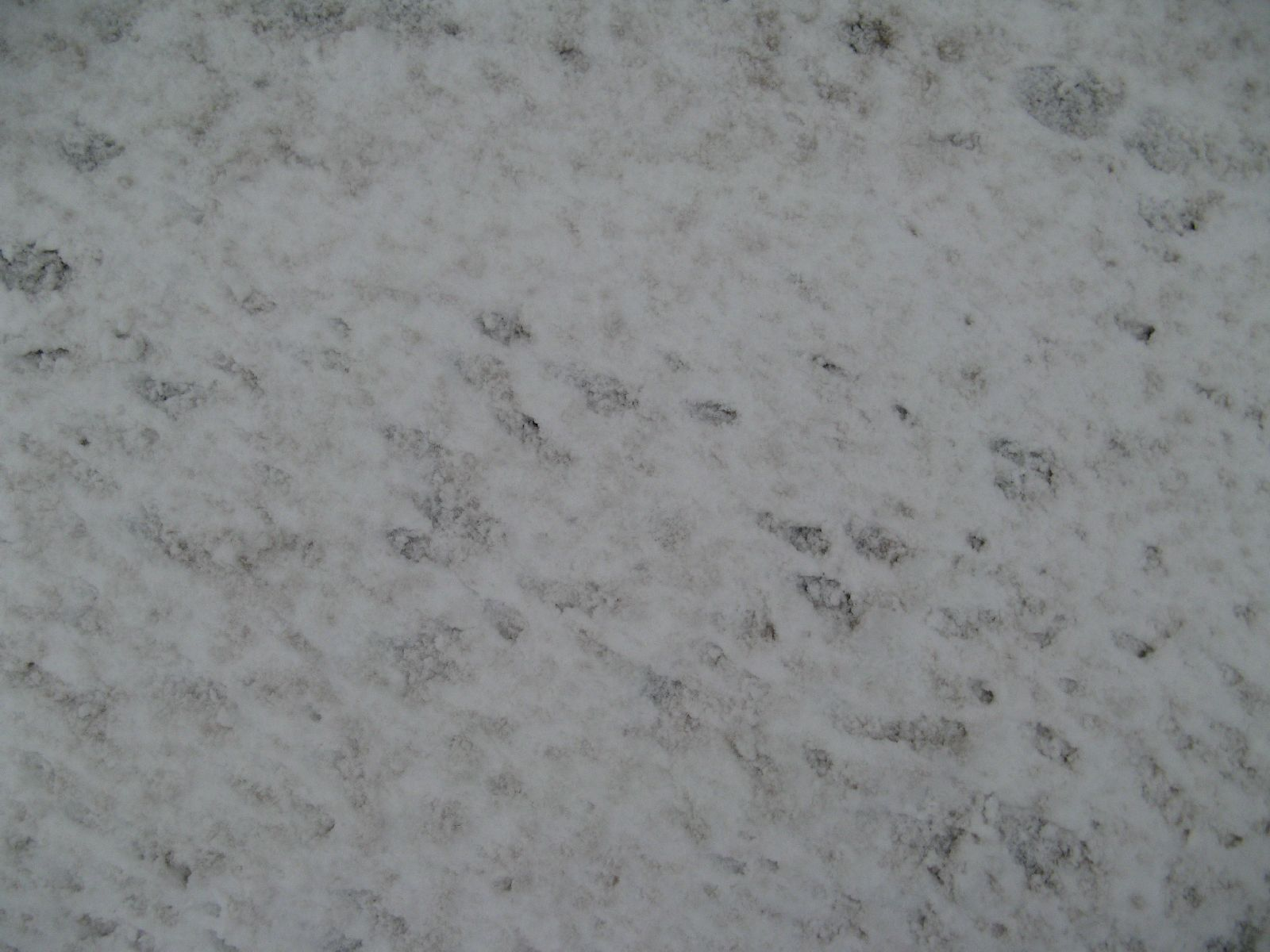 Schnee-Eis_Textur_B_5890