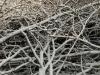 Schnee-Eis_Textur_A_PB226708