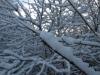 Schnee-Eis_Textur_A_PB226715