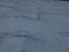 Schnee-Eis_Textur_A_PC211510