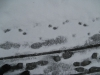 Schnee-Eis_Textur_B_5824