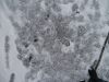 Schnee-Eis_Textur_B_5829