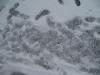 Schnee-Eis_Textur_B_5830