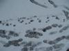 Schnee-Eis_Textur_B_5831