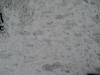 Schnee-Eis_Textur_B_5889