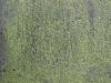 Stein_Textur_A_P5313171