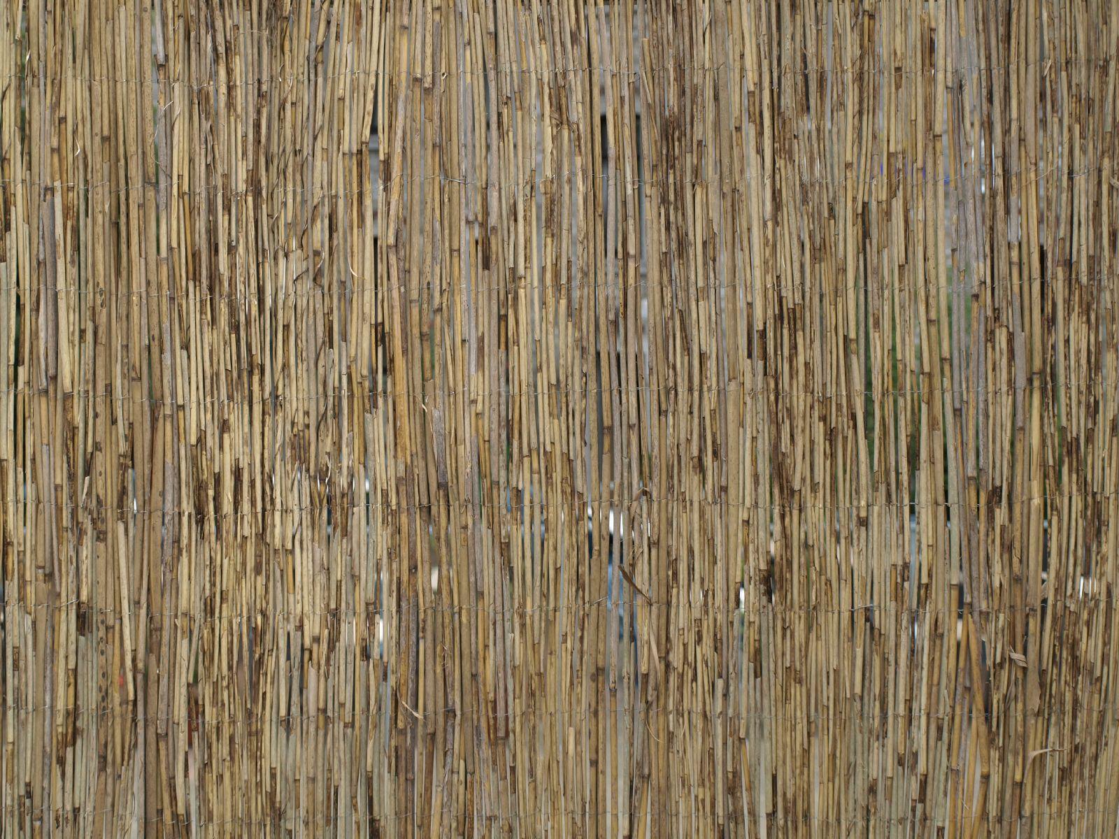 Various_Texture_A_P8034134