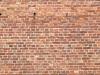 Wand-Mauerwerk-Backstein_Textur_A_P7128549
