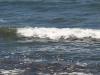 Wasser_Textur_A_P5224342
